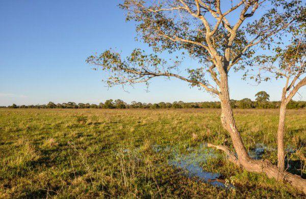 Pacote de Viagem para o Mato Grosso do Sul